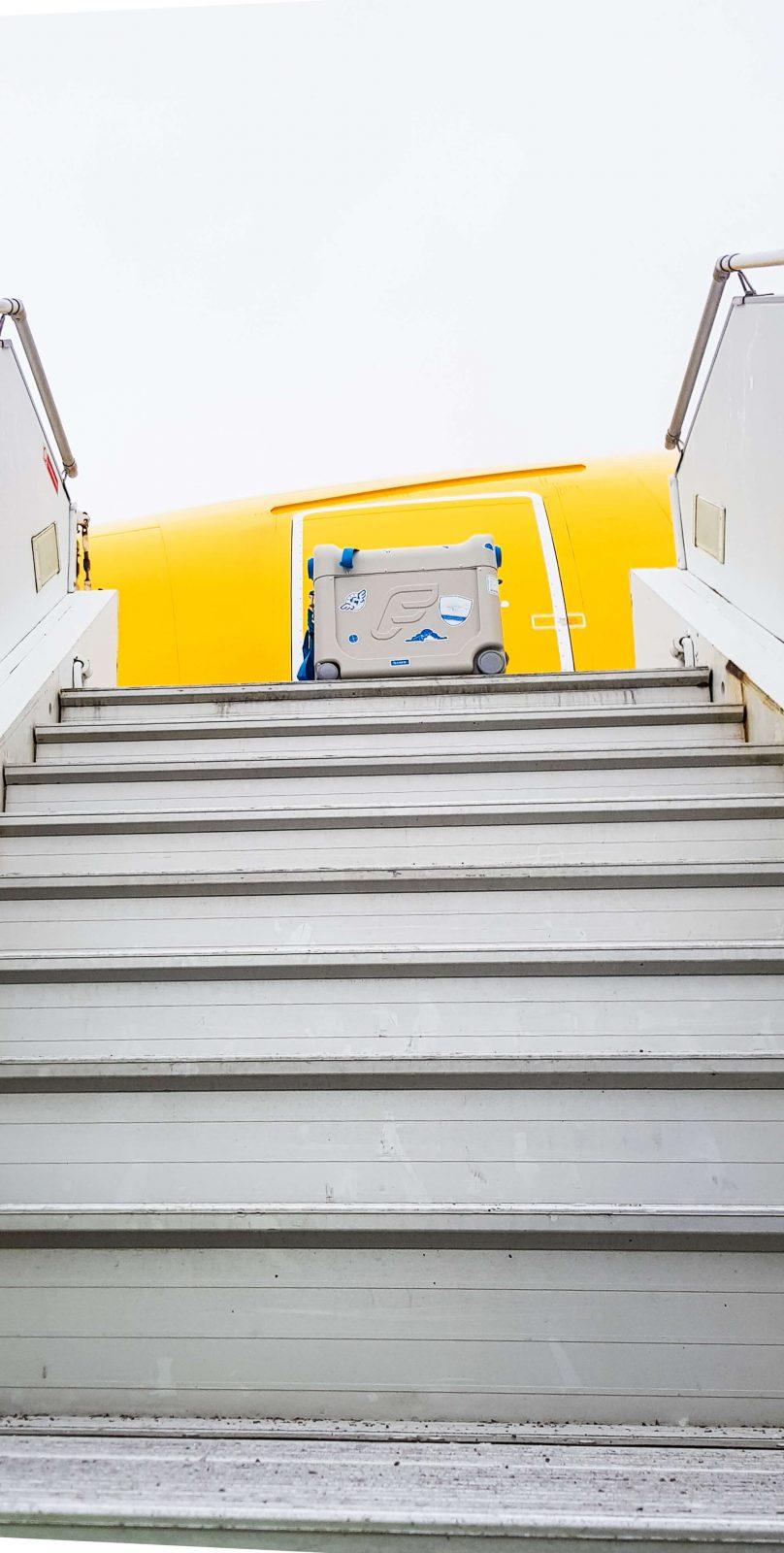 Gone Flying. BedBox.